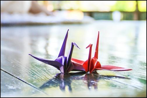 夫婦鶴の画像