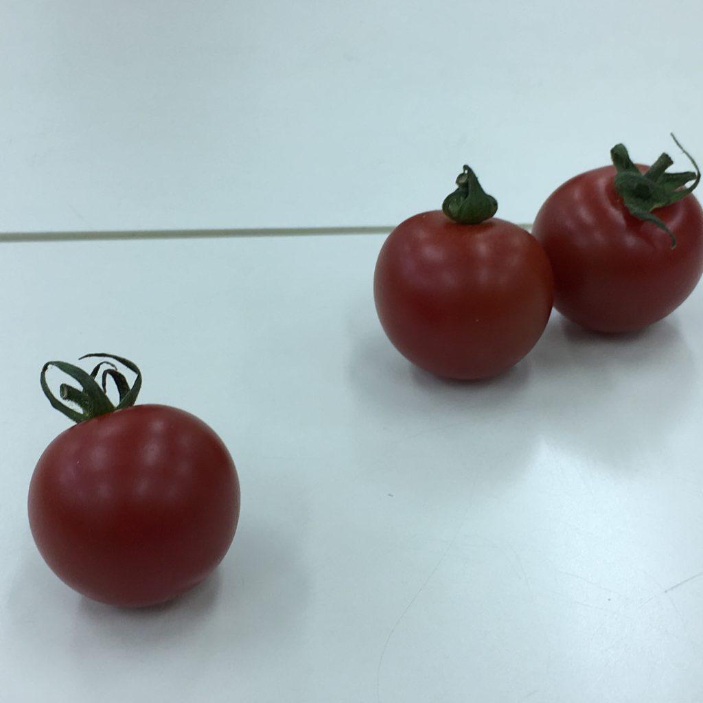 1個のトマトと2個となりあったトマトの画像