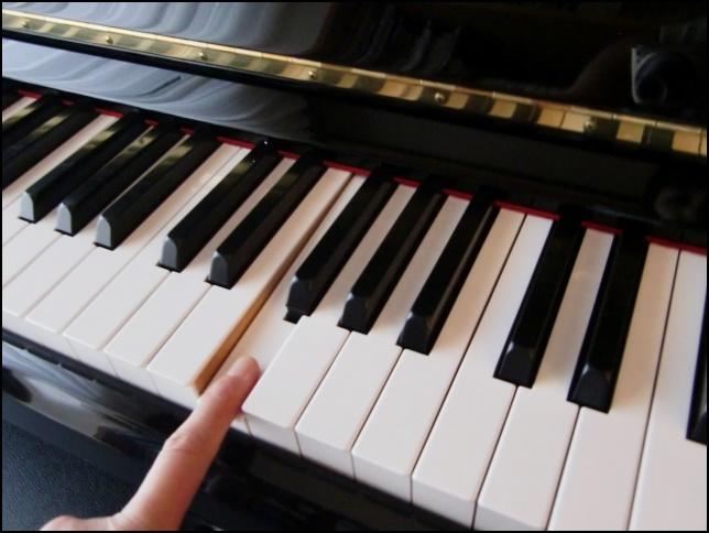 ピアノを弾く指の画像