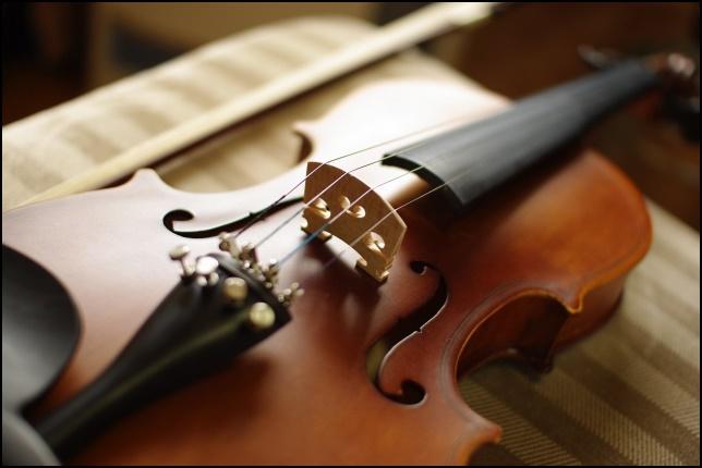 ヴァイオリンの画像