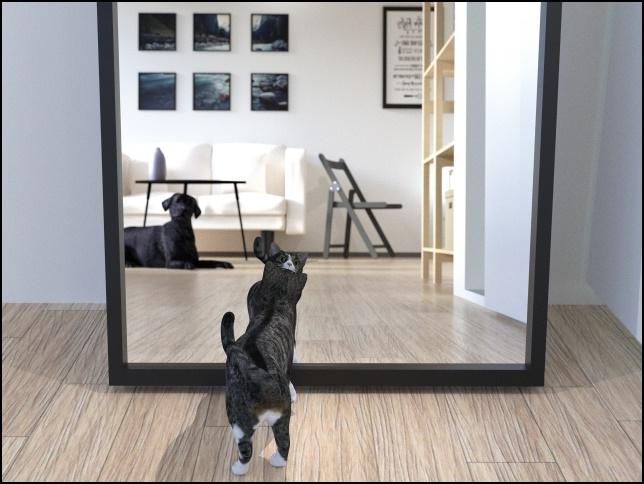 大きな鏡の画像